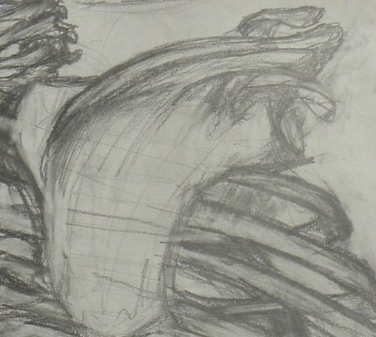 Scapula- graphite Rachel Brazil