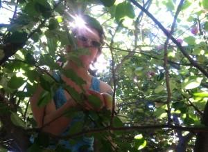 Who says I can't climb a tree?